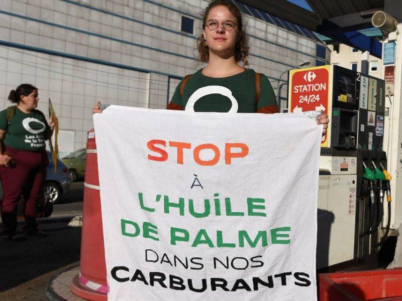 Stop à l'huile de palme dans le carburant